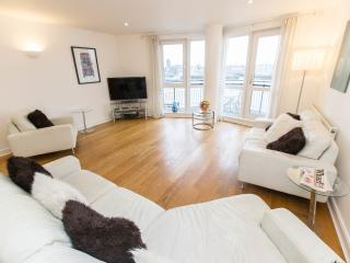 Riverside Luxury, Canary Wharf - London vacation rentals