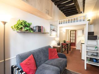 Charms, Location, Amenities, Cleanliness: Perfect! - Paris vacation rentals