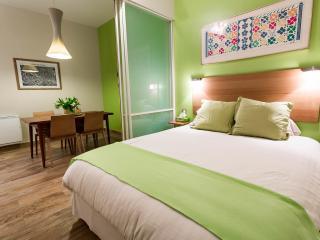 Victor Hugo Apartment in Paris - Paris vacation rentals