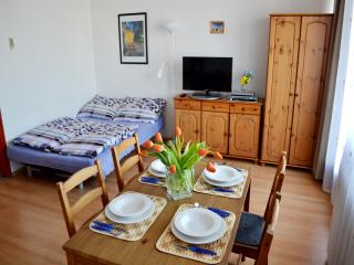 Bronson - Flat in Center of Buda - Budapest vacation rentals
