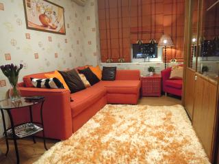 Lakshmi Apartment Prechistenka - Moscow vacation rentals
