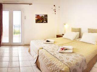 Double area apartment,2-4 people Chania West Crete - Chania vacation rentals
