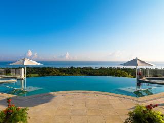Flower Hill, Sleeps 17 - Montego Bay vacation rentals