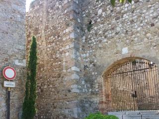 Una splendida vacanza in Castello - Padenghe sul Garda vacation rentals