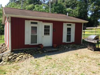 Nice House with Internet Access and A/C - Concord vacation rentals