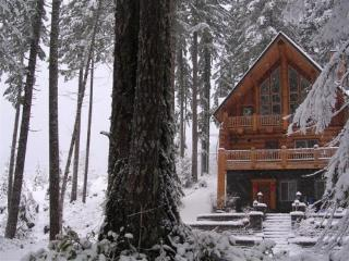 Voted 'Best in the NW'A Majestic Mountain Retreat - Rhododendron vacation rentals