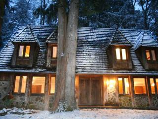 Mt Hood's Alpine Chalet Your Home Base for Fun! - Rhododendron vacation rentals