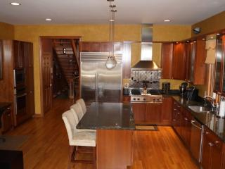 Lincoln Park Custom Single Family Home - Chicago vacation rentals