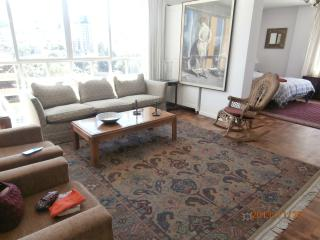 Nice Condo with Internet Access and Television - La Paz vacation rentals