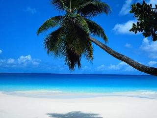 ELEGANT JUNIOR 1 BEDROOM SOUTH BEACH - Miami Beach vacation rentals