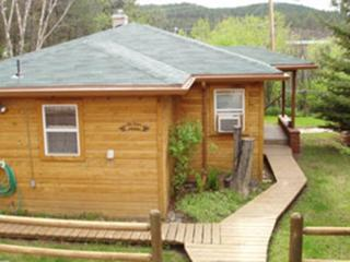 2 bedroom Cottage with Internet Access in Hill City - Hill City vacation rentals