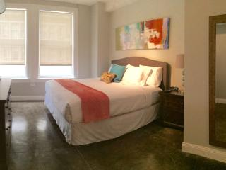 Houston Downtown Historic Luxury! - Houston vacation rentals