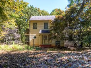 'Melody House' Peaceful 3BR Charlottesville House w/Wifi, Fireplace & Year-Round Breathtaking Views - Close to UVA, Outdoor Activities, Wineries, Restaurants & Shopping! - Charlottesville vacation rentals