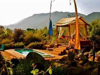 'Casa de Paz' Ojai Destination for Serenity and Family Retreats w/ 3BR House and More! - Ojai vacation rentals