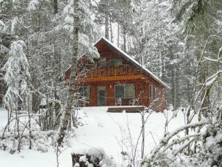 Family Friendly Affordable Fireplace, h tub & more - Packwood vacation rentals