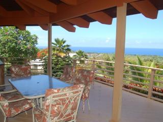 Whale Watch view Heaven - Kailua-Kona vacation rentals