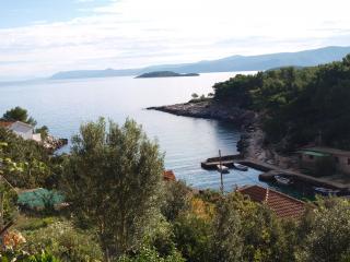 36708 A3 (2+2) - Cove Basina (Jelsa) - Jelsa vacation rentals