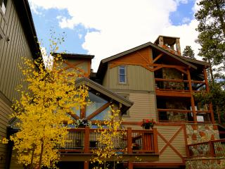 Truly Ski-in and Ski-out on Peak 8 in Breck - Breckenridge vacation rentals