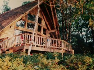 Lakefront House on Beautiful Northern Michigan Lak - Gaylord vacation rentals