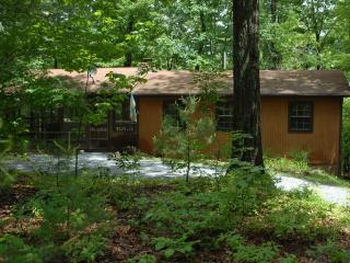 Secluded Cozy Mountain Cabin w/Hot Tub*Midweek Special* - Rileyville vacation rentals