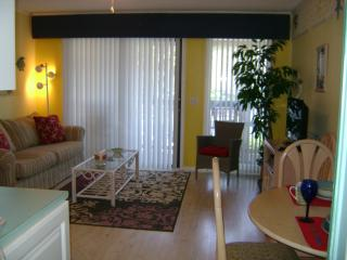 Ocean Villa 100 yards to Beach and Oceanside Pool - Hilton Head vacation rentals