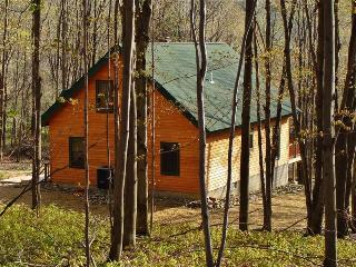 Peaceful 2BR + Loft House in Ellicottville - Close Proximity to All Local Attractions, Ski Slopes, & Outdoor Recreation - Ellicottville vacation rentals