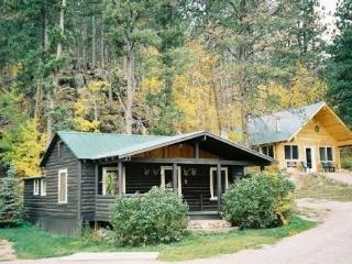 Black Hills Cabins near Mt. Rushmore, Crazy Horse - Hill City vacation rentals