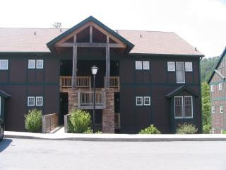 115/nt.Special,pool,,httb,WiFi,no stairs,privacy, - Boone vacation rentals