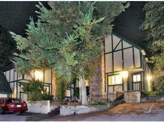 Mountain Retreat, Vacation, Reunion w/ Lake access - Lake Arrowhead vacation rentals