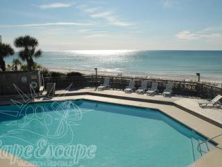 SPECIALS:  Uncrowded, Family & Pet Friendly Beach! - Port Saint Joe vacation rentals