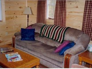 Charming, new pine interior cabin,overlooks pond - Glover vacation rentals