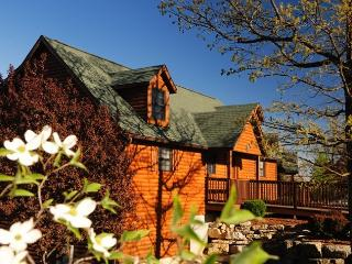 Resort 4BR/BA Cabin: Indoor Pool and Hot Tubs! - Branson vacation rentals