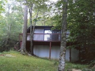 2 bedroom House with Deck in Beech Mountain - Beech Mountain vacation rentals