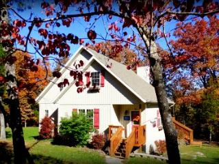 Quaint Cottage in Woods,Lakefront 20min to Branson - Ridgedale vacation rentals