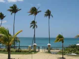 Beachfront, Rainforest,Luquillo just minutes away. - Loiza vacation rentals