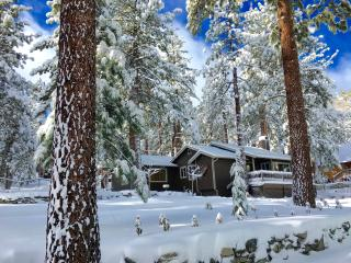 Whispering Pines Cottage: Luxury 1Bd+1Ba; Sleeps 3 - Wrightwood vacation rentals