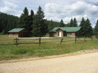 Cozy 2 bedroom Rochford Cabin with Porch - Rochford vacation rentals