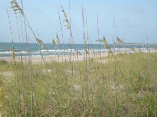 Perfect House with Internet Access and Dishwasher - Wrightsville Beach vacation rentals