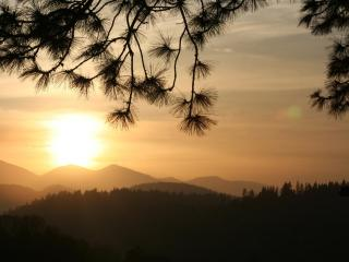 Serenity Nest -In Escrow as of 5/26. THANK YOU ALL - Crestline vacation rentals