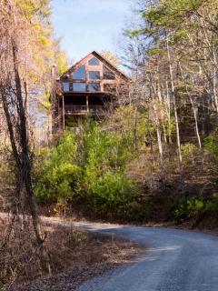 """North Georgia Vacation """"Big Dog"""" Cabin Hawks Ridge - Morganton vacation rentals"""