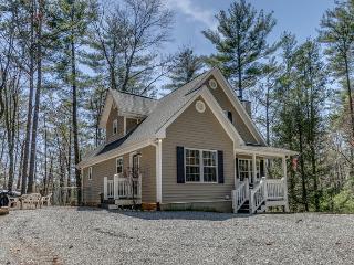 Secluded North Georgia Cabin near Blue Ridge - Ellijay vacation rentals