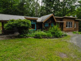 Cozy Cabin with Internet Access and A/C - Woodstock vacation rentals