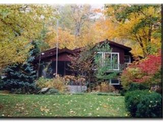 Nice, big, friendly house on Lake George--June 17-24 now $2,100 for up to 10 ppl - Diamond Point vacation rentals