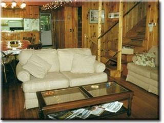 Nice, big, friendly house on Lake George. - Diamond Point vacation rentals
