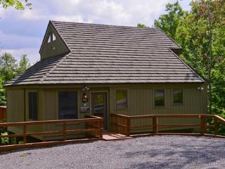 Beautiful Cabin with Deck and Internet Access - Davis vacation rentals