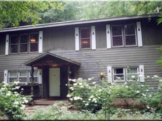 A Dream of a Woodland House.   Rent July 9-16 for $1,700; Aug. 27-31 for $1,100 - Diamond Point vacation rentals