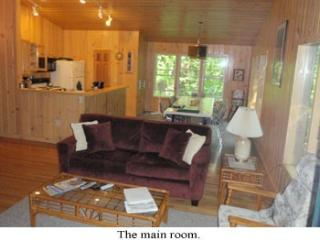 A Dream of a Woodland House.  6/25-7/3 now  1900. - Diamond Point vacation rentals