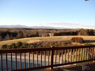 Secluded Cottage with Spectacular Mountain Views - Ruckersville vacation rentals