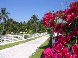 Tahiti Hai At Tahiti Beach, Elbow Cay, Hopetown - Hope Town vacation rentals