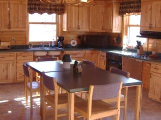 Handicap Accessible Cabin for Rent: - Rhinelander vacation rentals